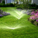 Landscaping inspiration: Why you should consider Installing an irrigation system