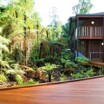 Landscaping the latest trends part 2